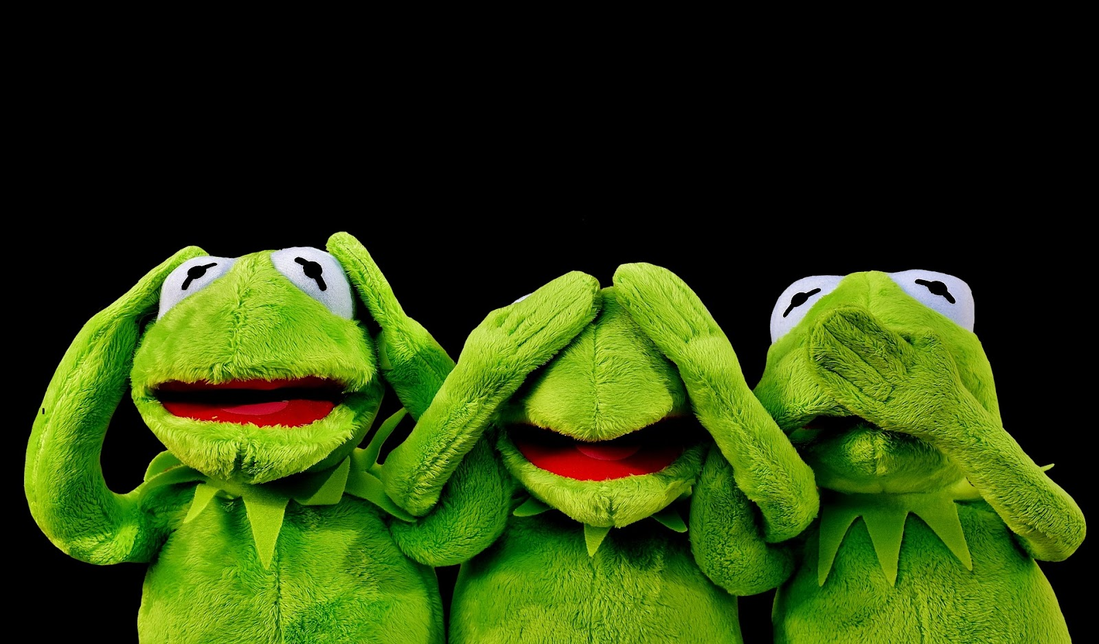 kermit not free website builders
