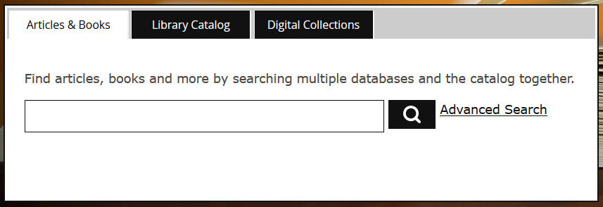 a computer screenshot of the library's online catalog search tool