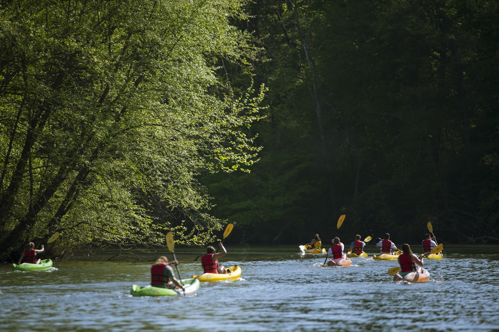 USNWC_Flatwater_Kayaking_on_the_Catawba_River.jpg