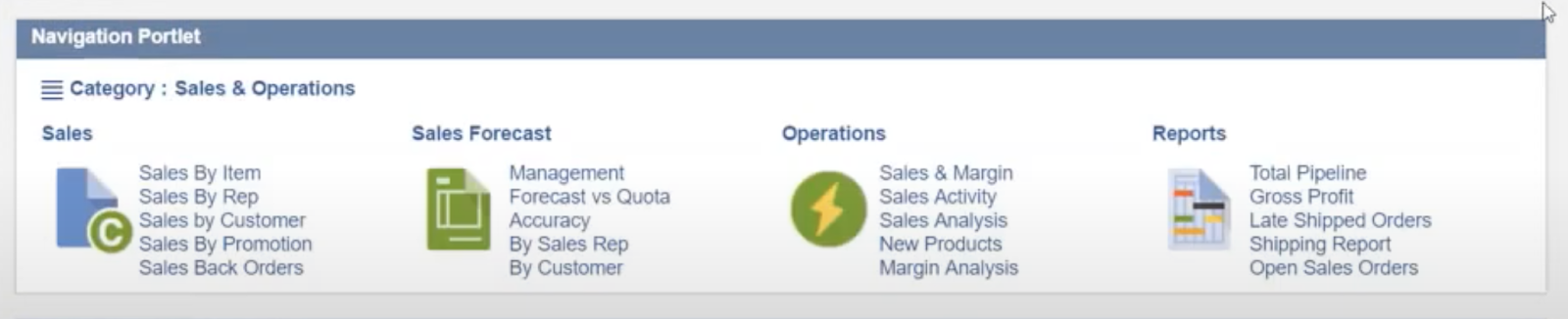 NetSuite's navigation portlet, shown at the top of the dashboard.