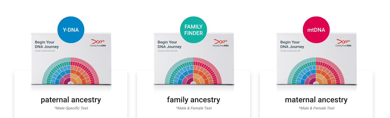 Family Tree DNA Review 21