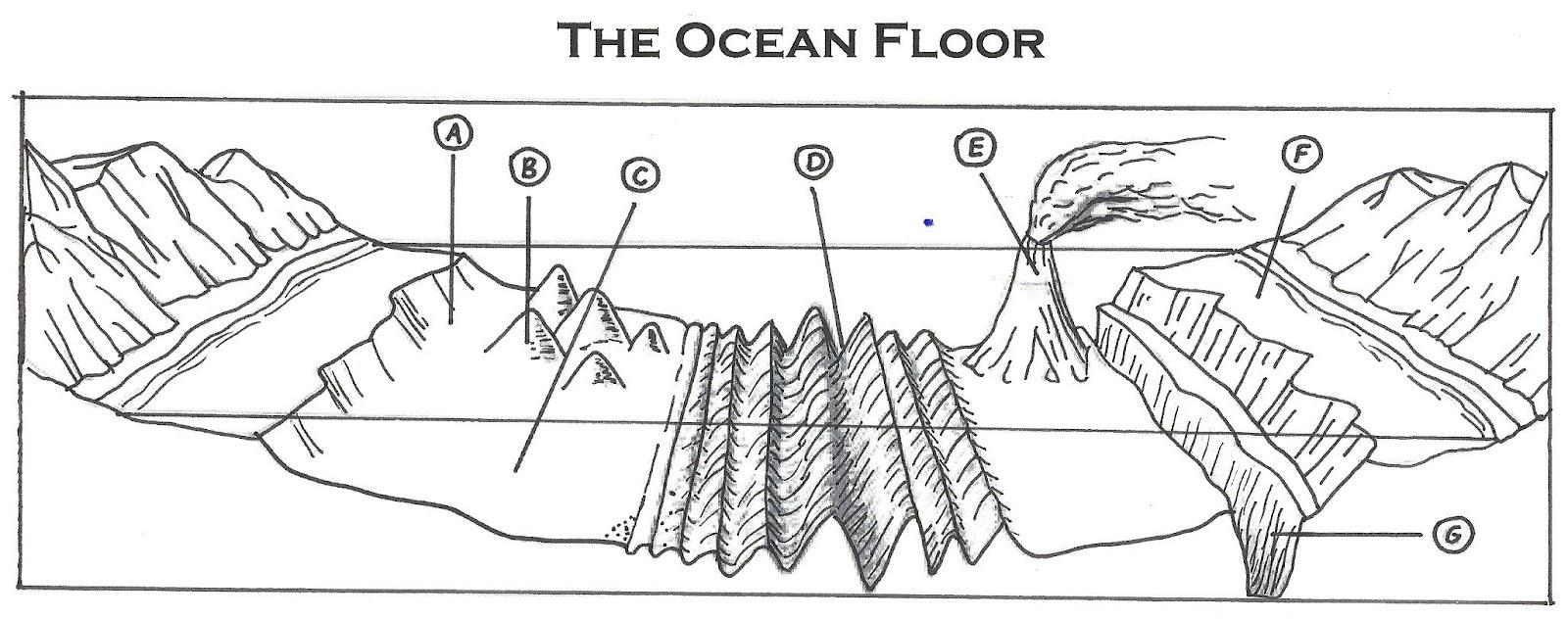 Ocean Features Review