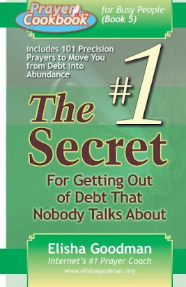 9780981349107: prayer cookbook for busy people (book 1): 222.