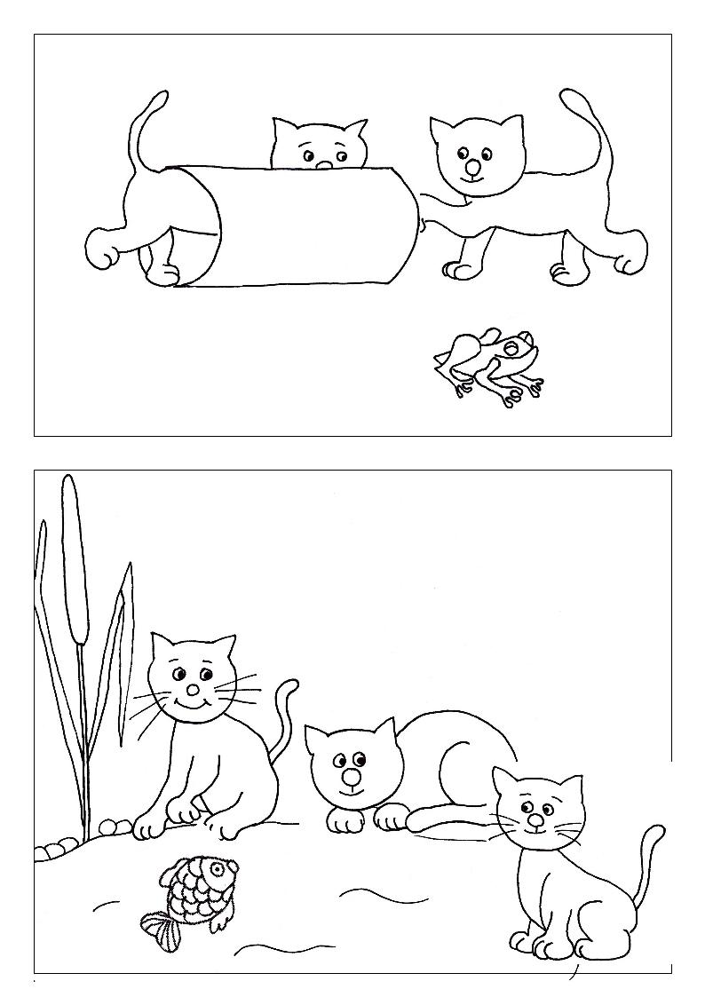 cica kifestő