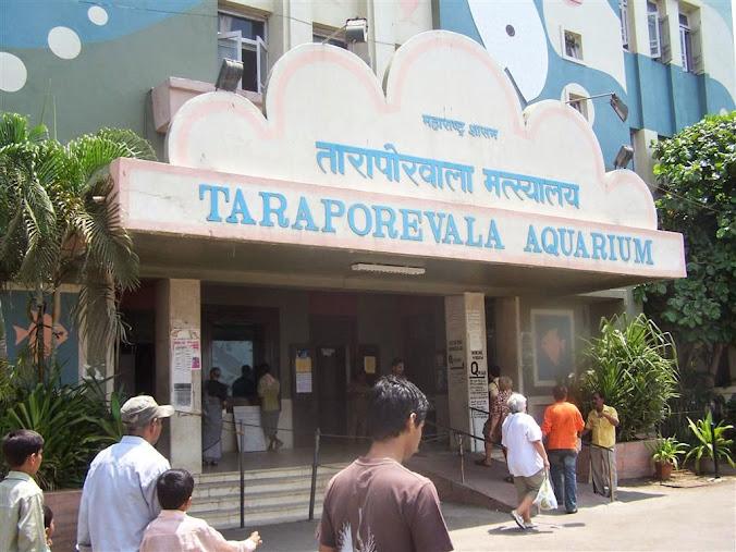 Entrance Of Taraporewala Aquarium Mumbai