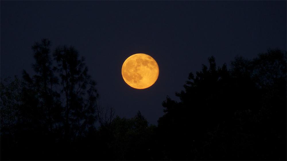 Moonrise 5.jpg