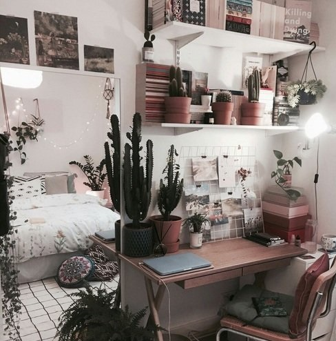 Plants give a homey touch to your room