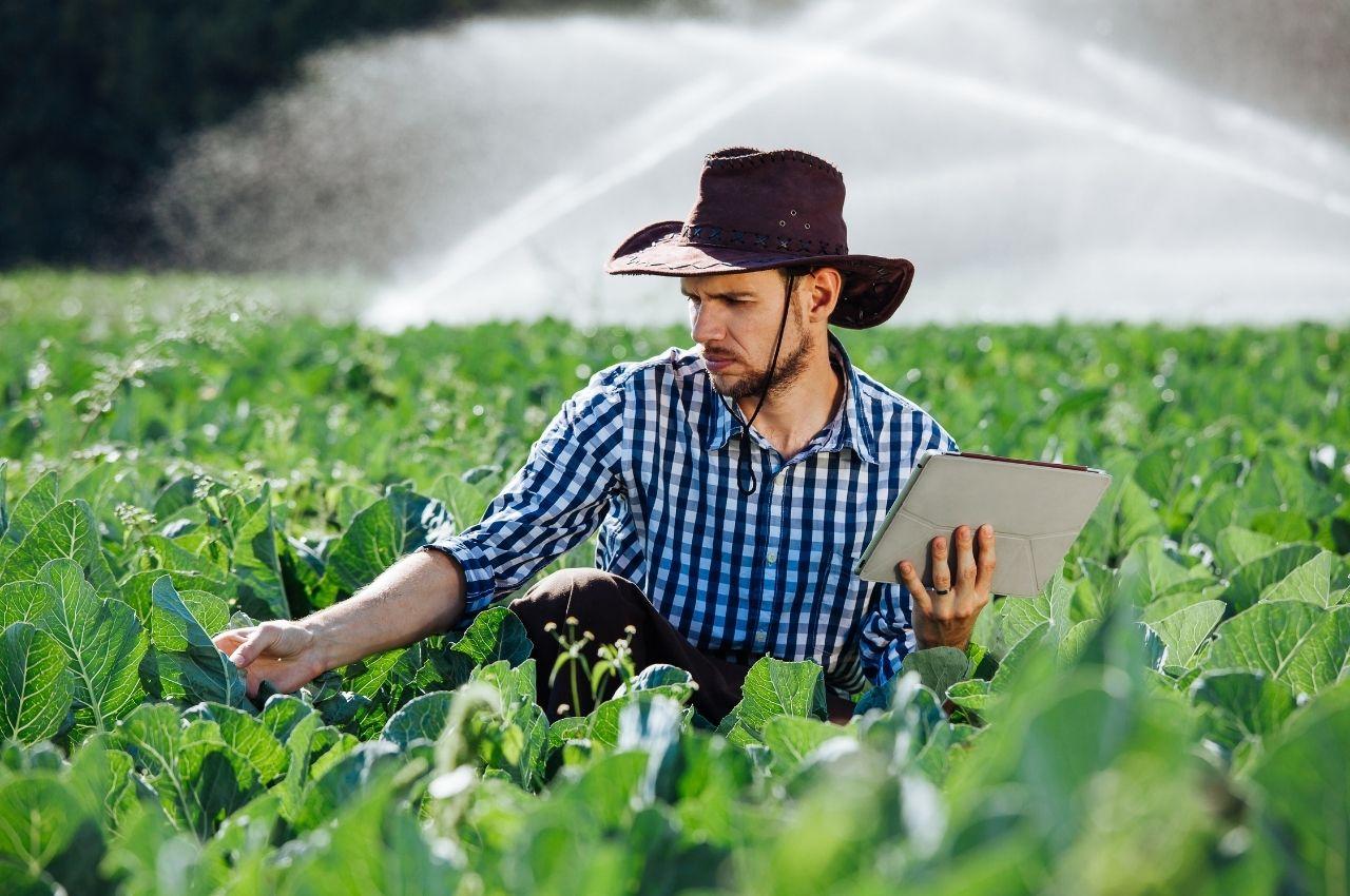 A nova onda de sustentabilidade promete geração de emprego e renda