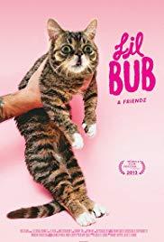 Lil Bub & Friendz Poster
