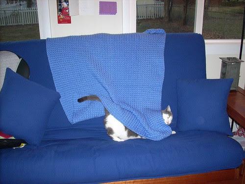 Raisin's Baby Blanket