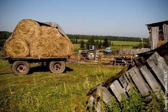 Белая раса Буров бежит от чёрного расизма из Африки в Россию