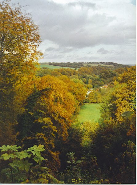File:Looking Down the Zig-Zag Walk, Selborne Hanger. - geograph.org.uk - 179853.jpg