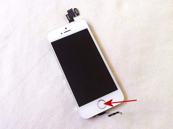 iPhone 5S disassembly stage 15