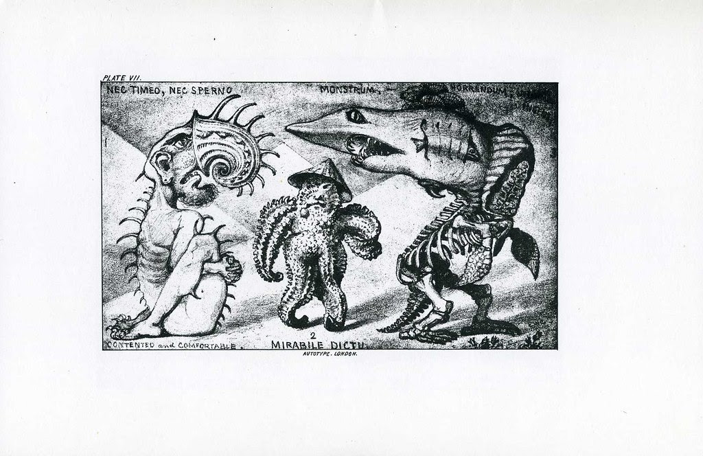 Edward William Cooke - Grotesque Animals - 7