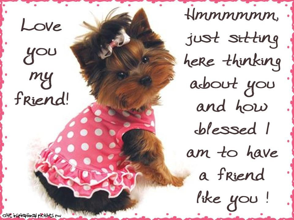 Love You My Friendthinking Of You Pictures Photos And Images
