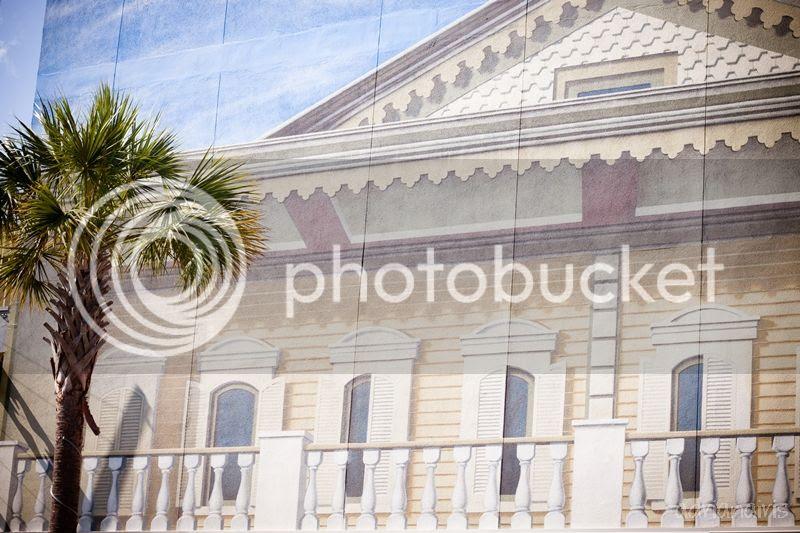 photo murals_zpsb1e7de58.jpg