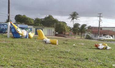 Fuleco gigante foi destruído na Zona Norte de Natal (Foto: Fred Carvalho/G1)