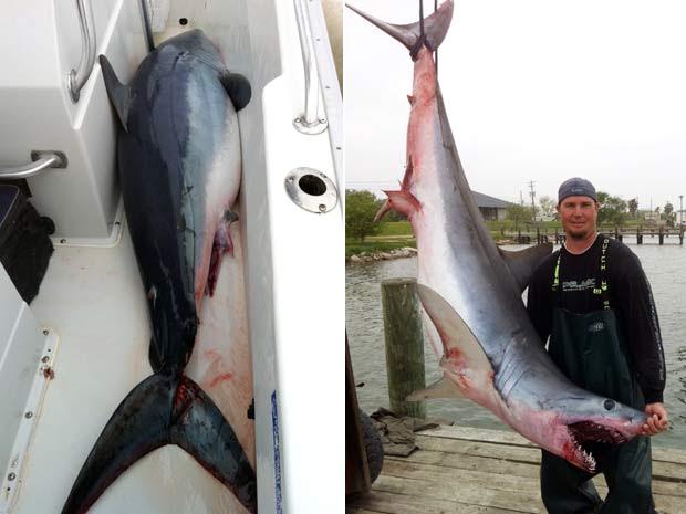 Em março de 2011, o norte-americano Jason Kresse disse que um tubarão de 2,4 metros e 170 quilos saltou dentro de seu barco enquanto ele e dois colegas estavam pescando no Golfo do México. Ele contou que eles não conseguiram chegar perto do predador para jogá-lo de volta ao mar. O tubarão acabou danificando o barco antes de morrer horas depois. (Foto: Jason Kresse/AP)
