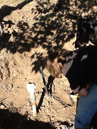 : Hole diggin
