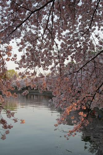 Washington DC Day 1 297