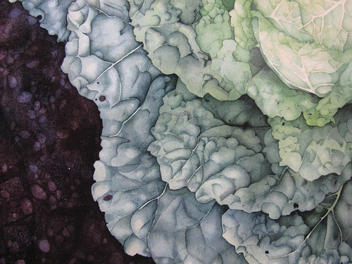 cabbage Linda Dallas