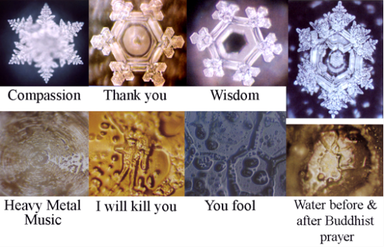 Dr. Emoto's Water Structures in Your Environment – Which One Does Your Space Resemble?
