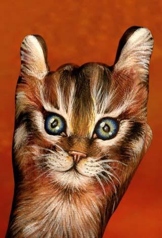 Gatto rosso - posizione 2 - Sigla televisiva per Animal Planet Discovery 2006 (Guido Daniele)