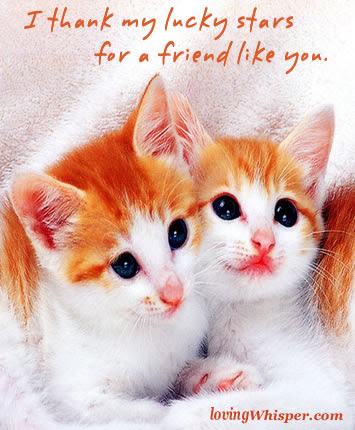 Im So Lucky To Have You As A Friend Friendship Quote