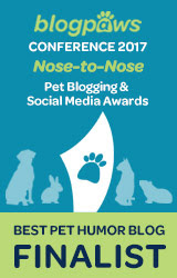 2017 BlogPaws Nose-to-Nose - BEST PET HUMOR BLOG FINALIST badge