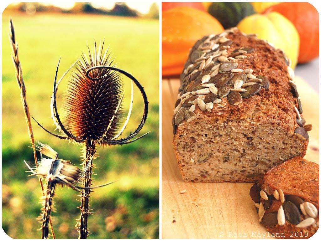 Norwegian Bread Picnik collage 6 bis