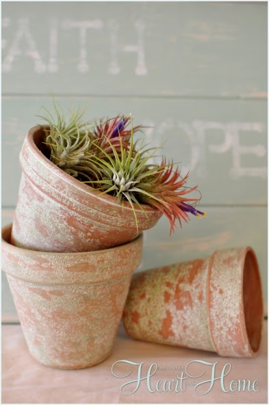 Five Sixteenths Blog Wednesday Decor Planning For Planting