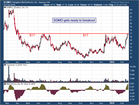 1-year chart of Sangamo (Nasdaq: SGMO)