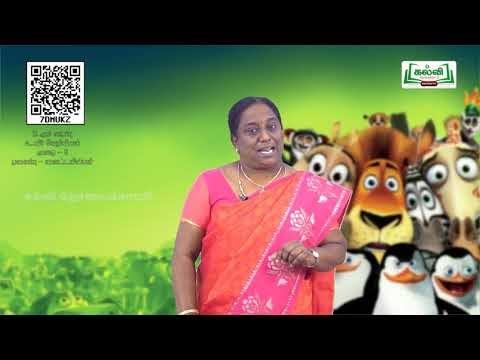 11th Bio Chemistry அலகு 3 வைட்டமின்கள் புரதங்கள் Kalvi TV