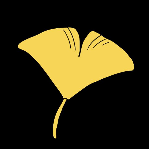 イチョウの葉のイラスト かわいいフリー素材が無料のイラストレイン