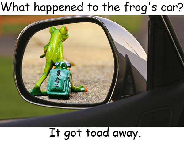 toad towed homophones
