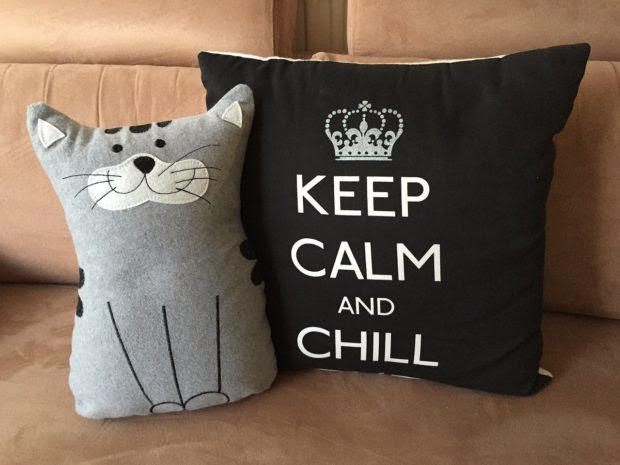 Things Design-Obsessed Cat Lovers Need in Their Home
