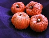 Jenny's Minis, Miniature Pumpkins for Fall Decor