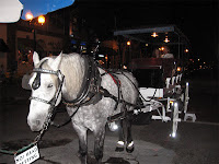That's Bob, our carriage leader
