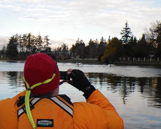 2011-01-09 Portage Inlet_0161