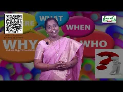 11th English Grammar Framing Questions  Unit 1 Part 1English Medium| Kalvi TV
