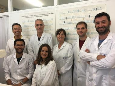 <p>Imagen de los investigadores participantes en el estudio, con Nacho Aguiló, a la derecha, y Carlos Martín, a la izquierda de pie. / Unizar</p>