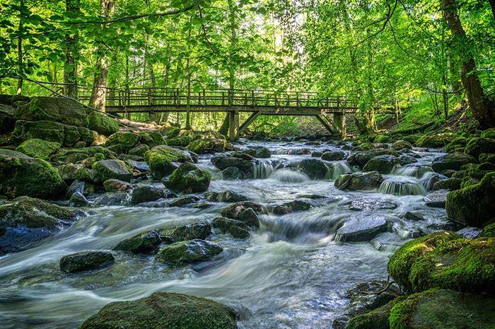 5 Manfaat Air Sungai  Bagi Manusia Semua Halaman Bobo