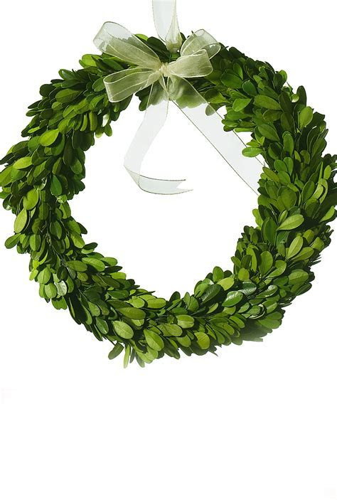 "Boxwood Wreath Natural 10"" Round Preserved Boxwood"