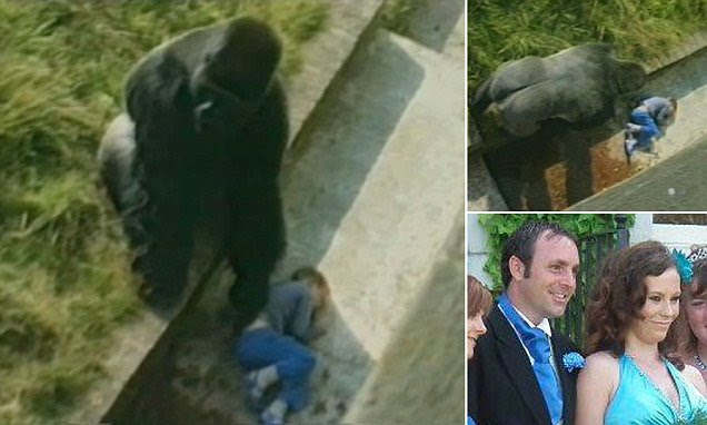 Levan Merritt who was protected by Jambo the gorilla relives moment 30 years on