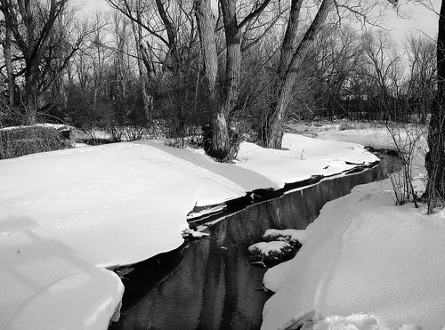 Creek by the River b&w3