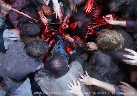 4 Things You Are Missing If You Are Not Watching The Walking Dead