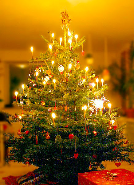 File:Juletræet.jpg
