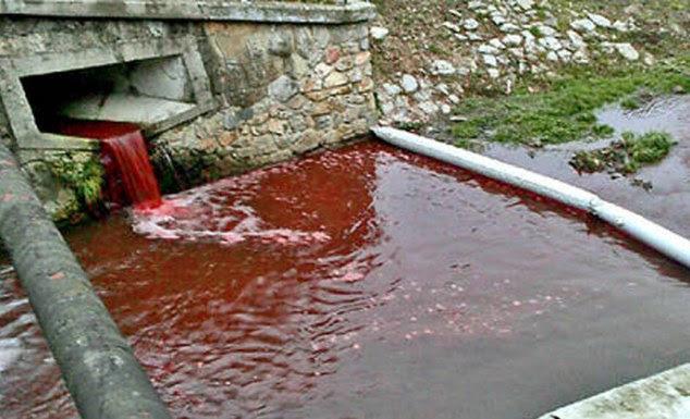 Correrrio: Moradores da pequena cidade de Myjava na Eslováquia acordou com um vermelho rio como sangue