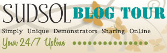 SUDSOL Blog Tour - May 17th