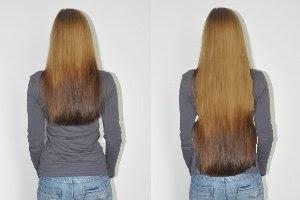 Haare Nichts Als Haare 13 Züchterupdate Echt Andrea
